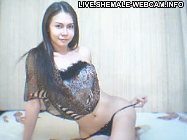 Tswidlbutterfly Mongolian Brown Hair Petite Shemale Live Hot