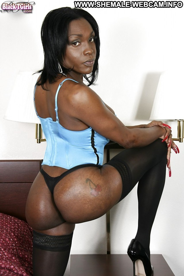 Free Ebony Shemale Ass Pics 3